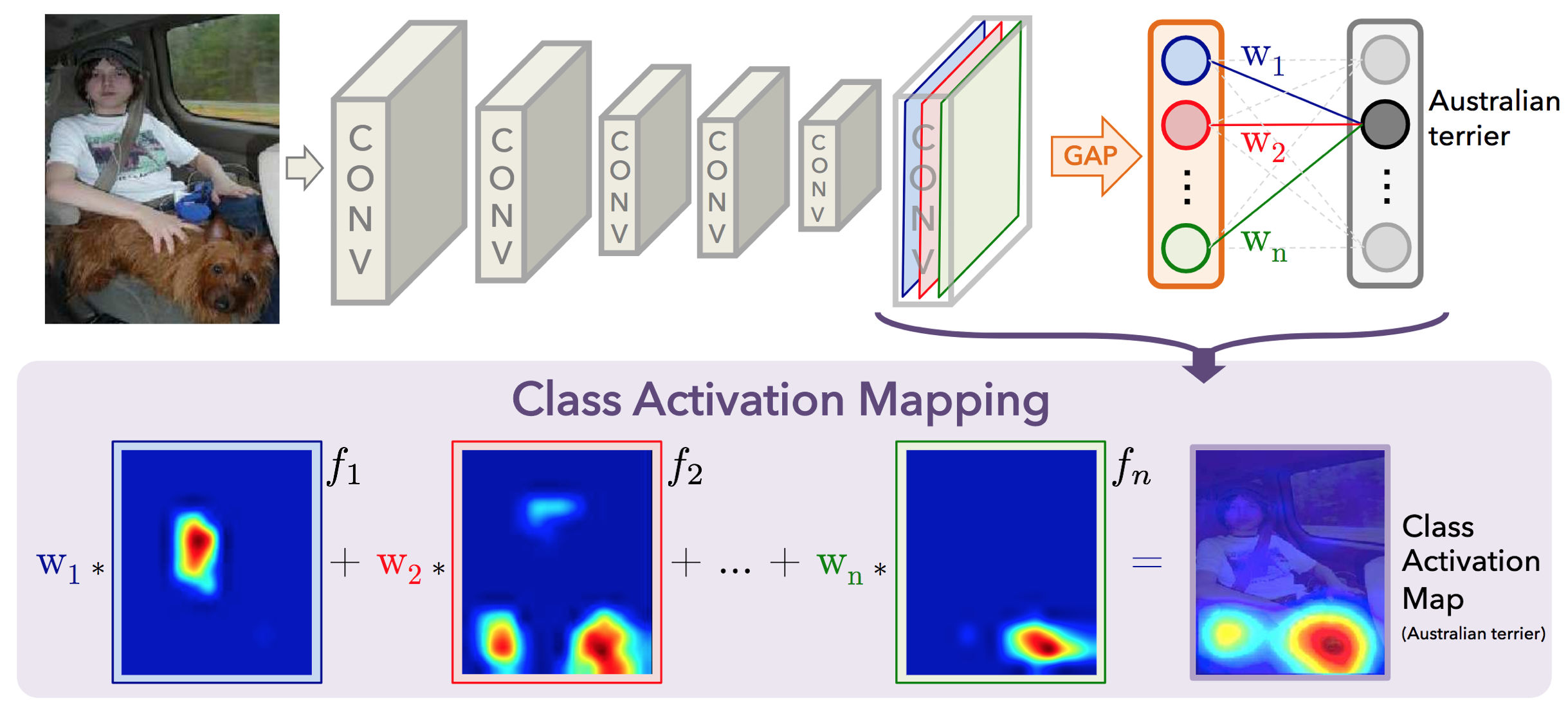 class activation mapping